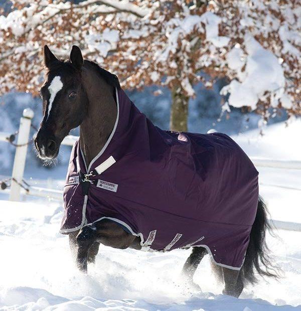 10 Tips per l'inverno (parte 3)
