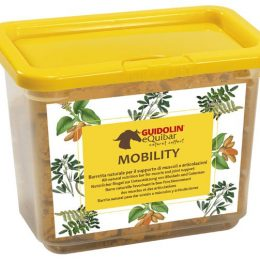 BISCOTTI MOBILITY 700 GR. Guidolin