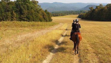 Passione Trekking – Il cavallo