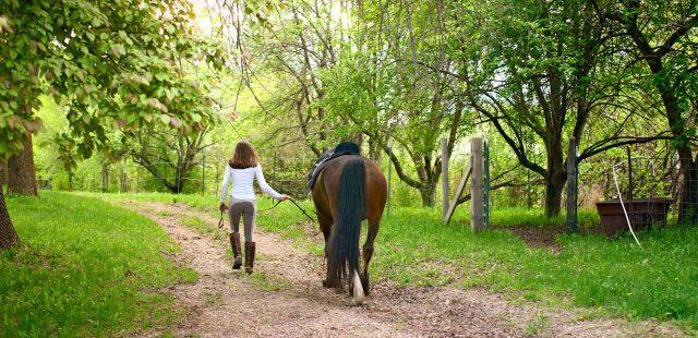 Passione Trekking – cavaliere e amazzone