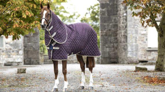 Come scegliere la coperta per il tuo cavallo